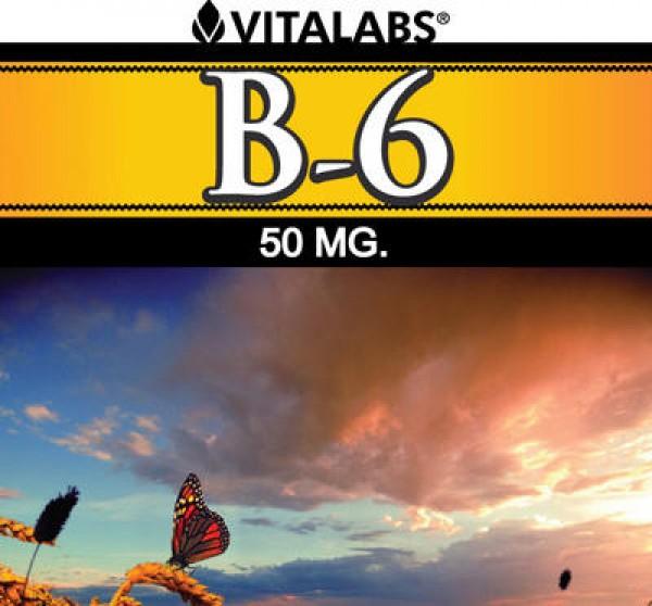 Vitamina B6 - 100 cápsulas 1